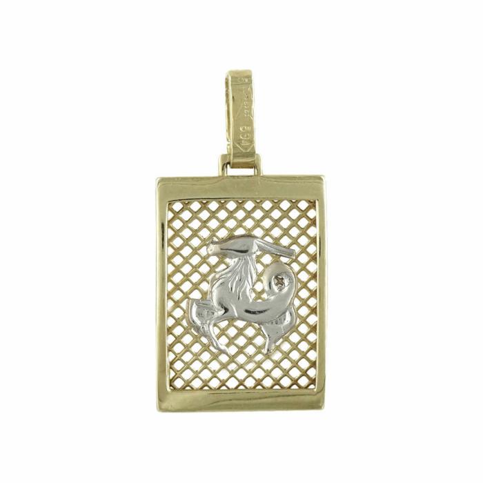 Δίχρωμο Χρυσό Ζώδιο ΑΙΓΟΚΕΡΩΣ Κ14 ZD110