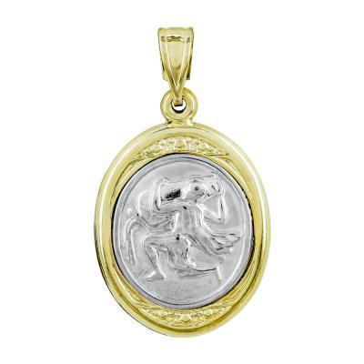 Ζώδιο Υδροχόος με Κωνσταντινάτο από Δίχρωμο Χρυσό Κ9 ZD244